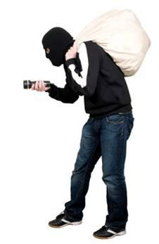 burgler 1 freedomborn