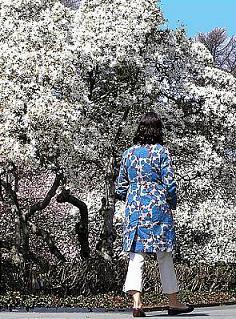 Magnolia's Blessing4