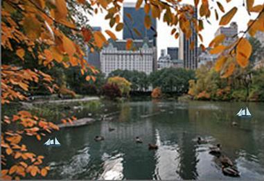 City Park 1