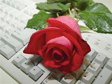 Rose 9.