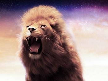 Lion 765