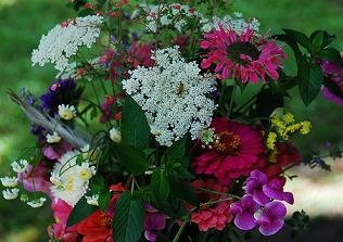 Mixed Flowers