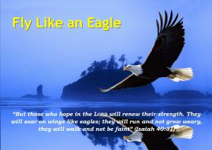 Fly Like an Eagle-Karina's Thought