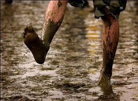 Muddy feet 291