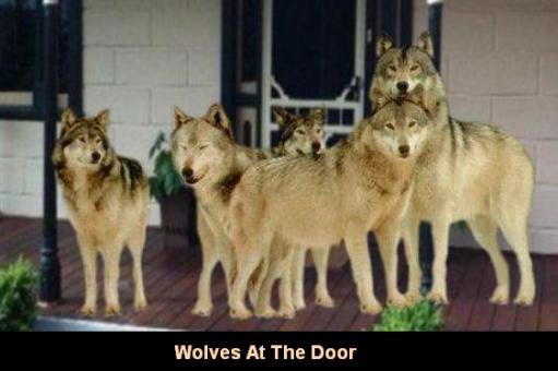 Wolves At The Door2
